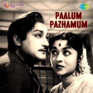 Ponaal Pogattum Mp3 Song Download Paalum Pazhamum