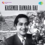Kashmir Hamara Hai