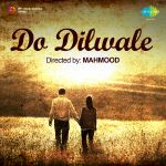 Do Dilwale