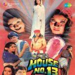 House No.13